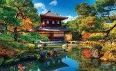 Fotobehang Natuur | Groen Blauw | 416x254