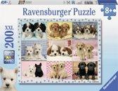 Ravensburger puzzel Snoezige Pups 200 XXL stukjes