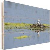 Steltkluut in een nestje Vurenhout met planken 30x20 cm - klein - Foto print op Hout (Wanddecoratie)
