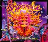 Museum of Consciousness