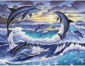 Schilderen Op Nummer - Dolfijnen