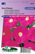Sluis Garden - Petunia Rose of Heaven