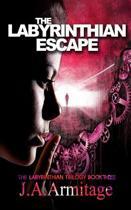 The Labyrinthian Escape