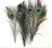 Set van 10 pauwenveren! - Handgesorteerd - 30 cm! - 10 grote sier veren - Sierveer - Pauw decoratie - Pauwveren