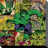 MARVEL COMICS - Canvas 40X40 - Hulk Squares