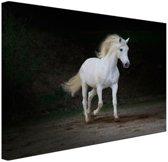Wit paard foto Canvas 30x20 cm - Foto print op Canvas schilderij (Wanddecoratie)