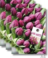 3x Dubbele A4 kaart met envelop - Van Harte - Formaat: 235 x 310 mm