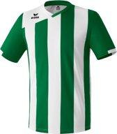 Erima Siena 2.0 KM - Voetbalshirt - Mannen - Maat S - Groen