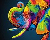 Diamond Painting Kleurrijke olifant 25x30cm. (Volledige bedekking - Vierkante steentjes) diamondpainting inclusief tools