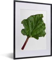 Foto in lijst - Een groot blad van een rabarber fotolijst zwart met witte passe-partout klein 30x40 cm - Poster in lijst (Wanddecoratie woonkamer / slaapkamer)