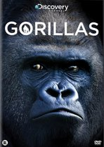 Discovery Channel : Gorillas