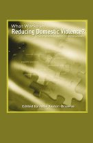 What Works in Reducing Domestic Violence