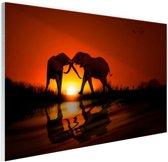 Olifanten koppel bij zonsondergang Glas 30x20 cm - Foto print op Glas (Plexiglas wanddecoratie)