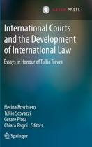 International Courts and the Development of International Law