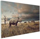 Afrikaanse dieren op de savanne Glas 90x60 cm - Foto print op Glas (Plexiglas wanddecoratie)