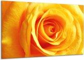 Canvas schilderij Roos   Geel, Oranje   120x70cm 1Luik