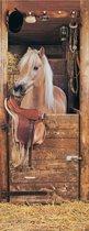 Vliesfotobehang Fotobehang Deur 2 Banen Paarden op stal Art. 19608