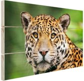 Close-up luipaard  Hout 120x80 cm - Foto print op Hout (Wanddecoratie)