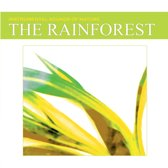 Sounds of Nature: The Rainforest