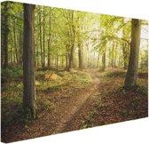 Een weg door het bos Canvas 30x20 cm - Foto print op Canvas schilderij (Wanddecoratie)