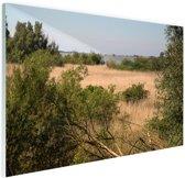FotoCadeau.nl - Natuur in Europa Glas 60x40 cm - Foto print op Glas (Plexiglas wanddecoratie)