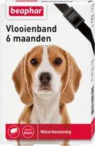 Beaphar Vlooienband Hond - Zwart - 1 St