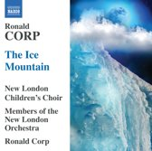 Corp: The Ice Mountain