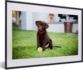 Foto in lijst - Labrador Retriever puppy met een tennisbal fotolijst zwart met witte passe-partout 60x40 cm - Poster in lijst (Wanddecoratie woonkamer / slaapkamer)