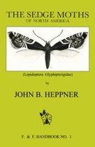 Sedge Moths of North America
