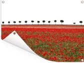 Bomen achter een veld met rode slaapbollen Tuinposter 40x30 cm - klein - Tuindoek / Buitencanvas / Schilderijen voor buiten (tuin decoratie)