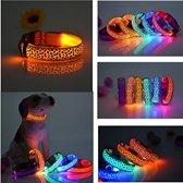 LED hondenhalsband lichtgevend (oranje dierenprint)