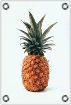 Tuinposter Ananas 80x120cm- Foto op Tuinposter (wanddecoratie voor buiten en binnen)