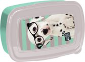 Studio Pets Spots & Glasses - lunchbox - 18,5 x 13 x 6 cm - Multi