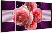 Glasschilderij Roos | Paars, Roze | 160x80cm 4Luik | Foto print op Glas |  F005833
