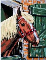 Schilderen op nummer - horse and stable