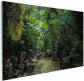 Riviertje in tropische jungle Glas 30x20 cm - Foto print op Glas (Plexiglas wanddecoratie)