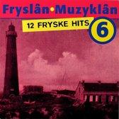 Fryslan-Muzyklan (6)