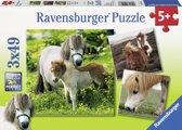 Ravensburger Lieve pony´s Drie puzzels van 49 stukjes