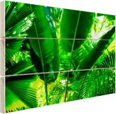 FotoCadeau.nl - Tropische bladeren in jungle  Hout 80x60 cm - Foto print op Hout (Wanddecoratie)