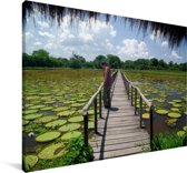 Lelievijvers bij de Pantanal in Zuid-Amerika Canvas 30x20 cm - klein - Foto print op Canvas schilderij (Wanddecoratie woonkamer / slaapkamer)