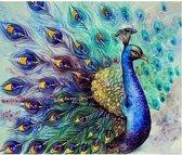 Diamond Painting - Pauw - 30 x 36 cm - Maak de mooiste schilderijen helemaal zelf