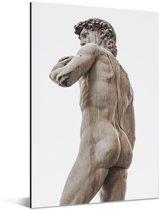 Het David standbeeld te vinden in Florence Aluminium 80x120 cm - Foto print op Aluminium (metaal wanddecoratie)