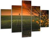 Glasschilderij Natuur | Groen, Bruin | 100x70cm 5Luik | Foto print op Glas |  F001655