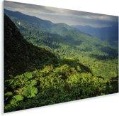 Uitzicht over het Bosque Nuboso Monteverde in Costa Rica Plexiglas 90x60 cm - Foto print op Glas (Plexiglas wanddecoratie)