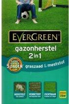 Gazonherstel graszaad + mest 2-IN-1 - 20 m²