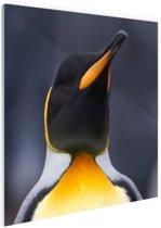 Koningspinguin portret Glas 90x60 cm - Foto print op Glas (Plexiglas wanddecoratie)