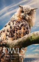 Owls Pocket Monthly Planner 2017