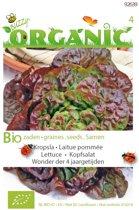 Buzzy® Organic Kropsla Wonder van 4 jaargetijden (BIO)