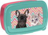 Animal Pictures Dierenvriendjes - Lunchbox - 18,5 x 13 cm - Multi