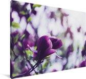 Seringenbloemen in de natuur Canvas 180x120 cm - Foto print op Canvas schilderij (Wanddecoratie woonkamer / slaapkamer) XXL / Groot formaat!